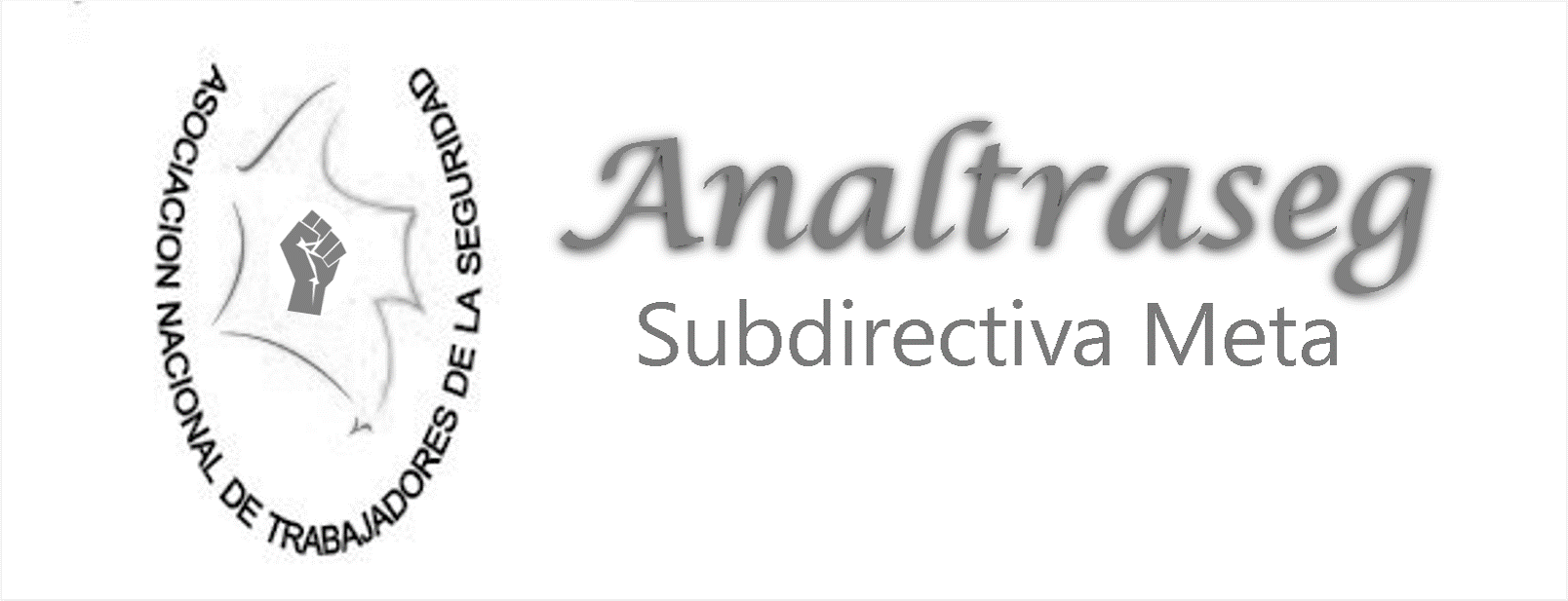 Analtraseg Meta